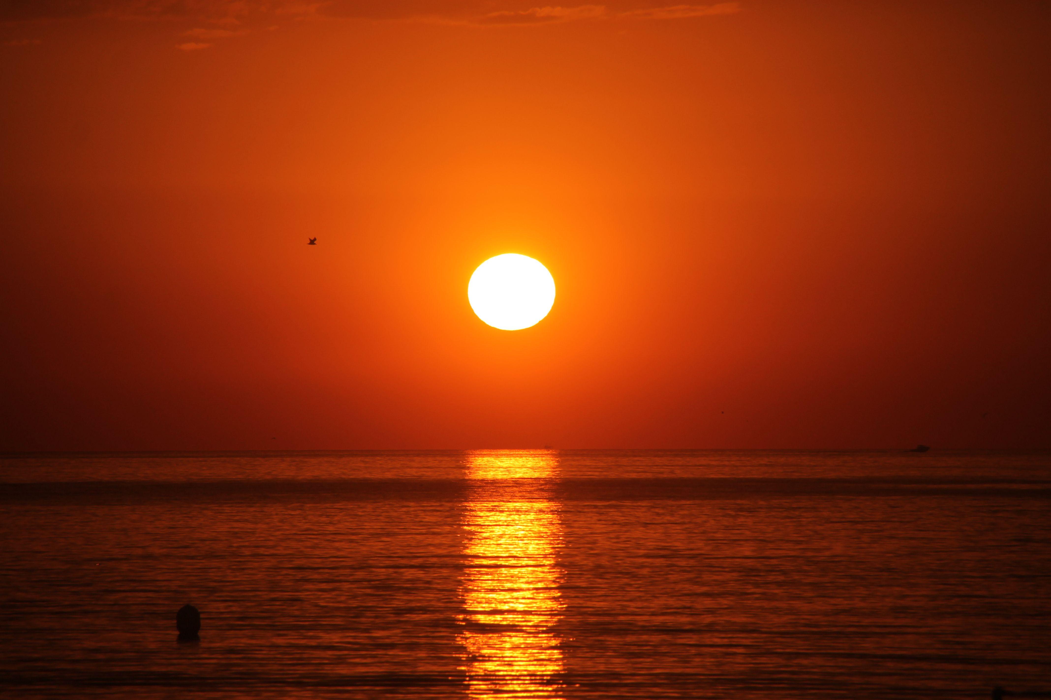 85f2ae764f Importancia del sol