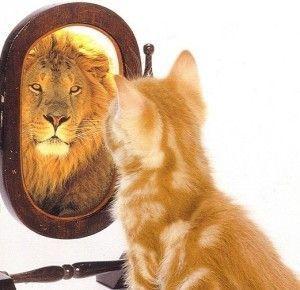 Importante la autoestima